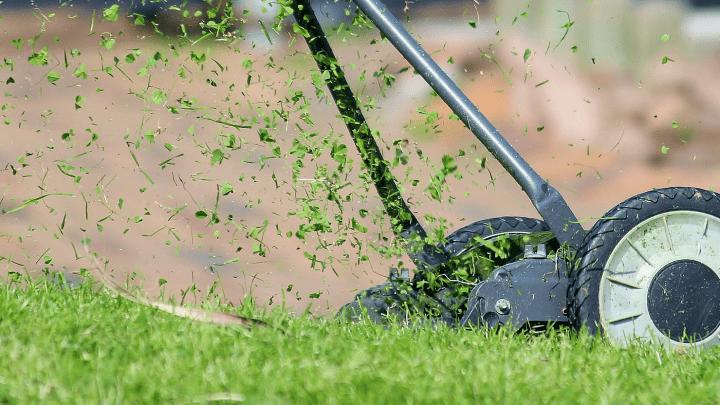 Vil du gerne have en flottere græsplæne?